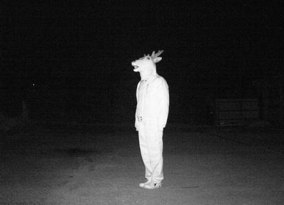 ハイクカム_夜