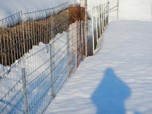 トタン板を使用した獣害柵は雪にも強い!