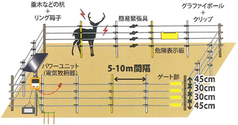 シカ用電気柵設置例