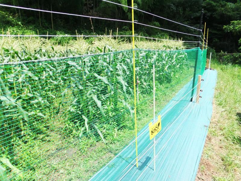 多獣種対策電気柵ネットフェンス(長野式)