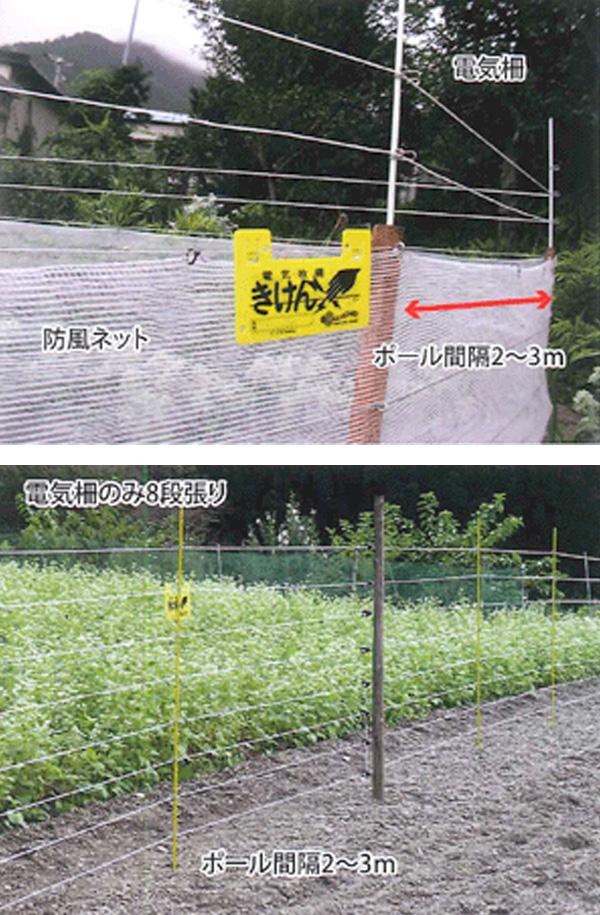 サル用電気柵設置例