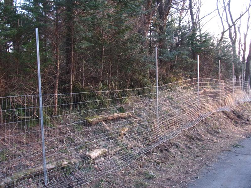 フェンス下段