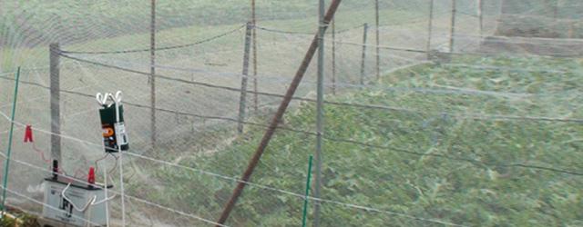 獣害フェンス