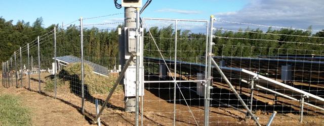 太陽光発電所フェンス