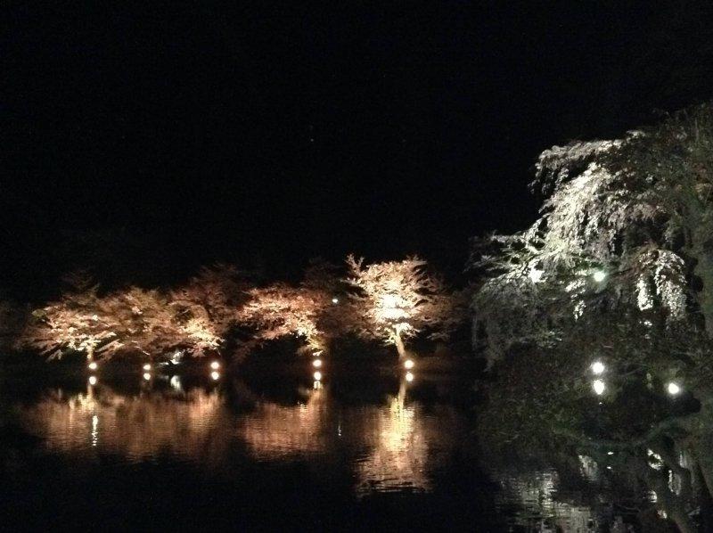平成最後のお花見 @須坂市 臥竜公園