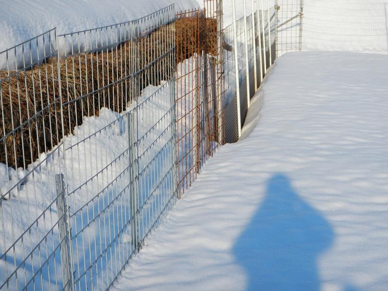 トタンとメッシュ 積雪比較