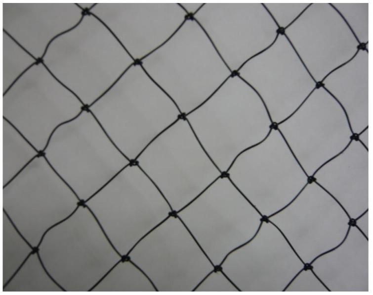 鳥インフルエンザ・豚コレラ対策に 【強力防鳥網】